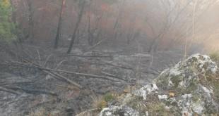 Požiar na Dúpnej skale sa podarilo zlikvidovať