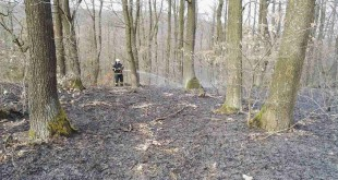 Požiar lesa v obci Podolie Kopanice
