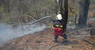 Prehľad požiarovosti v Slovenskej republike za mesiac júl 2016