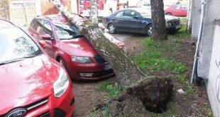 V súvislosti s vetrom zasahovali najmä hasiči v Trnavskom kraji