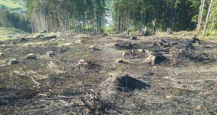 Pre nedovolené spaľovanie vznikol požiar, ktorý zasiahol plochu 12 tisíc m2